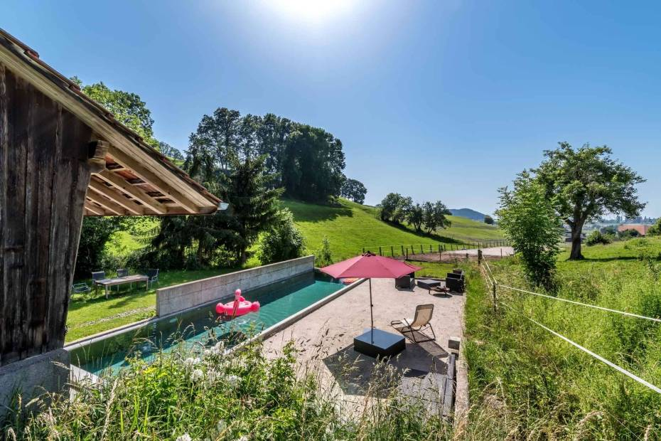 Magnificent renovated riding farm with 2 stables, garden and pool for sale in Bonnefontaine