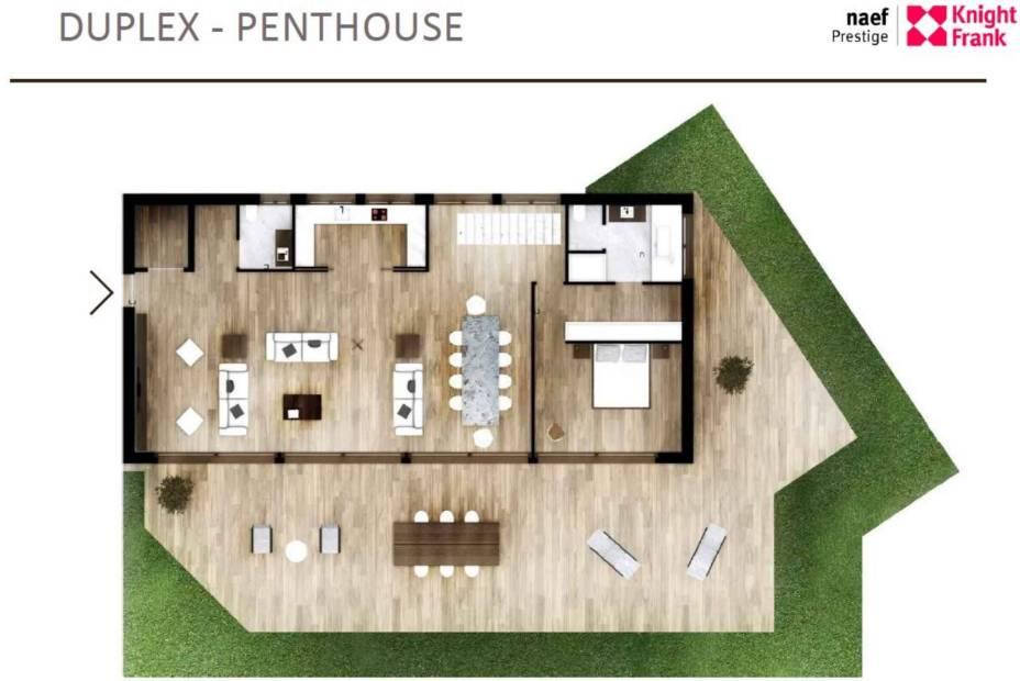 Penthouse en duplex d'exception